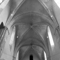 Les voûtes de la nef vues vers l'est (2000)
