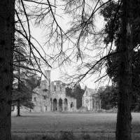 Les ruines de l'abbatiale et la chapelle de l'abbé dans leur environnement, vues du sud-ouest (1995)