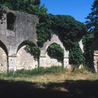 Le mur gouttereau nord de la nef vu vers le nord-est (1995)