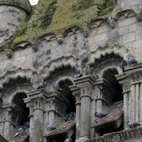 Vue partielle des baies du deuxième étage du clocher depuis le nord-est (2016)
