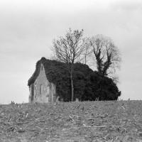 Les ruines de l'église vues du nord-est (1972)
