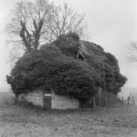 Les ruines de l'église vues du sud-ouest (1972)