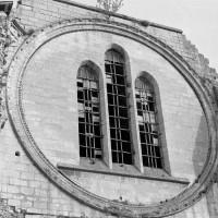 La rose de la façade ouest (1974)