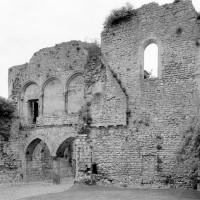 Vue partielle du palais et de la chapelle vers le nord-est (1980)