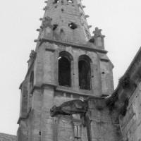 Le clocher nord vu de l'ouest (1994)