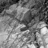 Arc formeret (1999)