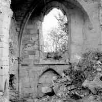 Les ruines de la chapelle sud vues vers le sud (1979)