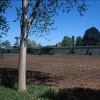 Le mur de clôture de l'abbaye
