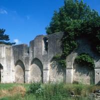 Le mur gouttereau nord de la nef vu vers le nord-ouest (1995)