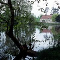 La chapelle dans son environnement vue de l'est (2000)