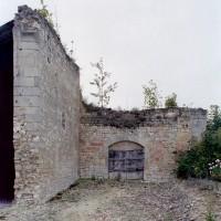 Les ruines de la nef vues vers l'ouest (2008)